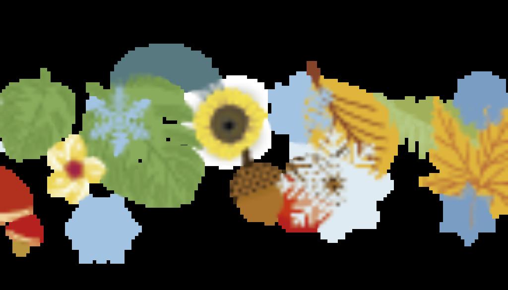 sky-of-four-seasons-tree-01